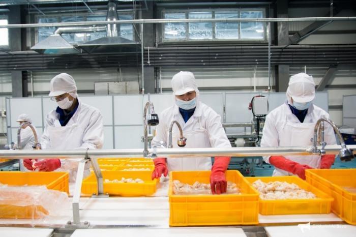 НаСахалине открылся первый завод поглубокой переработке краба и морепродуктов
