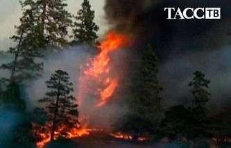 Лесной пожар в Калифорнии угрожает Йосемитскому национальному парку