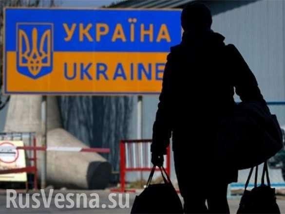 В Европе хуже, чем в ГУЛАГе: украинец об условиях труда и жизни в ЕС | Русская весна