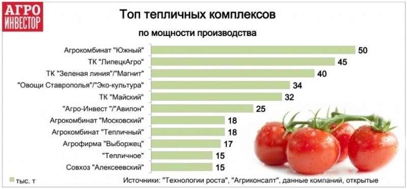 «Эко-культура» за год вложила в тепличные комплексы почти 20 млрд рублей