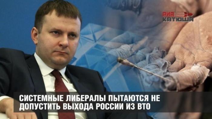 Либералы русофобы пытаются не допустить выхода России из ВТО