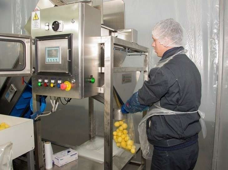 ВОмской области запущены крупное картофелехранилище иживотноводческий комплекс на520 коров