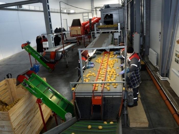 ВОмской области открыли картофелехранилище иживотноводческий комплекс