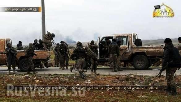 Сирия, Идлиб. Орды Аль-Каиды и Нусры в попытках сломить оборону правительственной армии | Русская весна