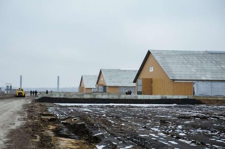 «ЭкоНива» запустила молочный комплекс вВоронежской области на2800 голов КРС