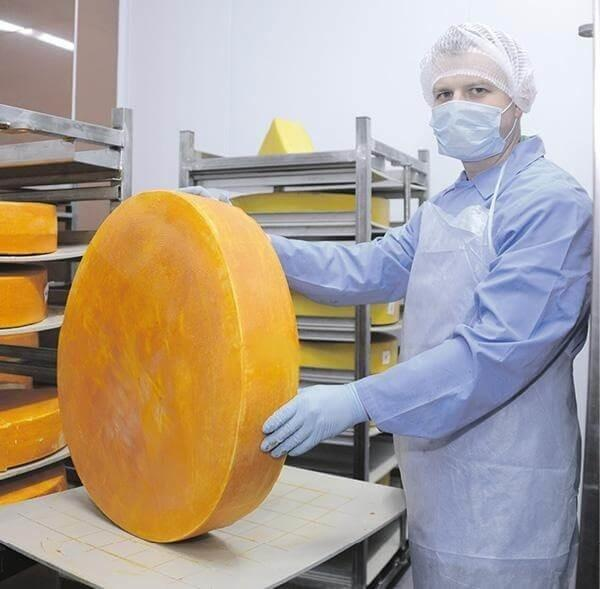 ВТульской области открыли инновационное производство для созревания сыра
