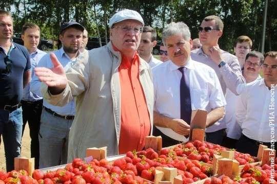 Антирейтинг кандидатов в президенты работает на Путина и Грудинина
