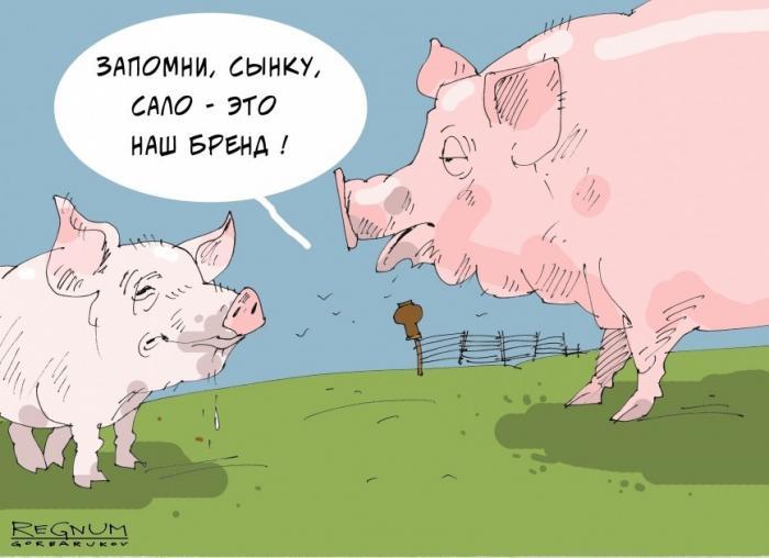 Главная заслуга евромайдана на Украине – незалежная начала импортировать сало