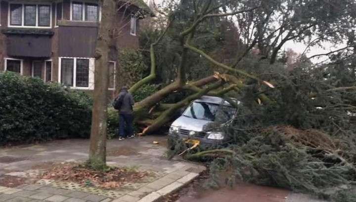 В Европе бушует самый мощный за 10 лет ураган. Число жертв постоянно растёт