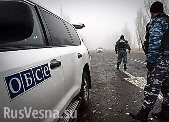 Гибель наблюдателя ОБСЕ в Донбассе. Важные подробности | Русская весна