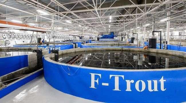 В Калужской области состоялось официальное открытие нового рыбоводческого комплекса