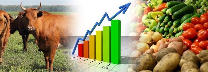 За время правления В.В. Путина экспорт сельхозпродукции увеличился в 15 раз