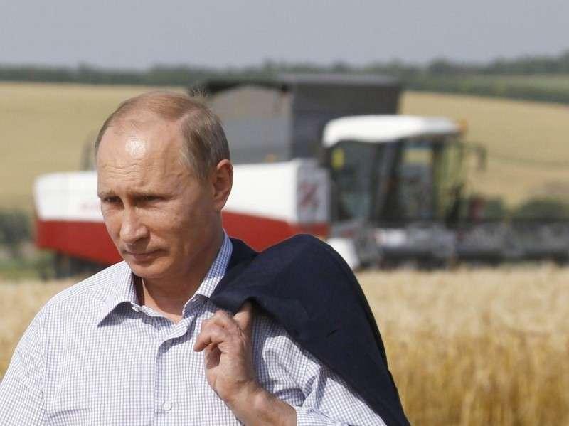 Владимир Путин знал, что делает: импортозамещение вытянуло экономику России из рецессии