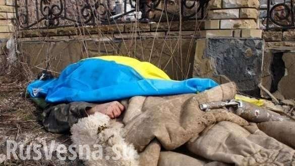 Ликвидация украинского оккупанта на Донбассе. Подробности операции | Русская весна