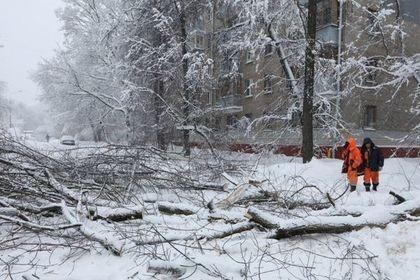 Последствия «снежного апокалипсиса» в Москве: пробки и миллион кубов снега