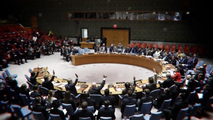 СБ ООН единогласно принял резолюцию о режиме 30-дневного прекращения огня в Сирии