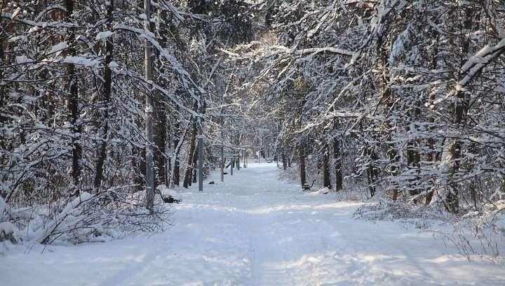 Москва: зафиксирован новый температурный рекорд!