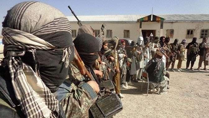 Талибы и «Аль-Каида» – инструмент США в борьбе с мировыми конкурентами