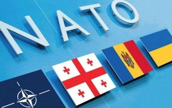 НАТО возрождает нацистскую дивизию СС «Галичина» в международном масштабе