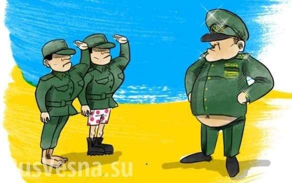 Вся правда о карателях ВСУ: как служат в незалежной и в России | Русская весна