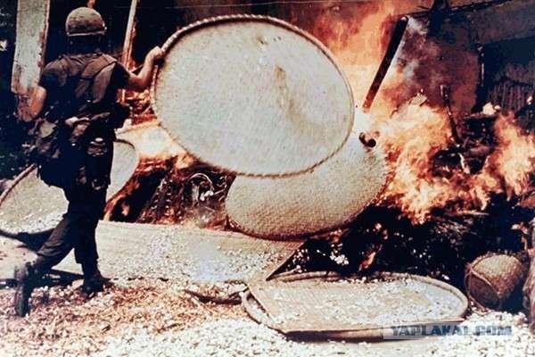 Вьетнам, бойня в Сонгми. Зверства американских карателей 21+