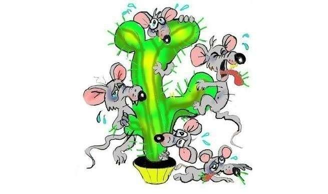 Русофобы-мыши кололись и плакали, но меню предлагало только кактусы