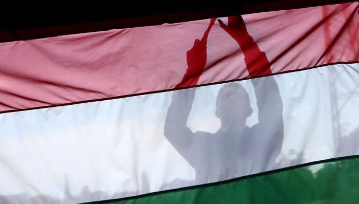Венгрия ставит блок киевской хунте: заноза в украинской политике