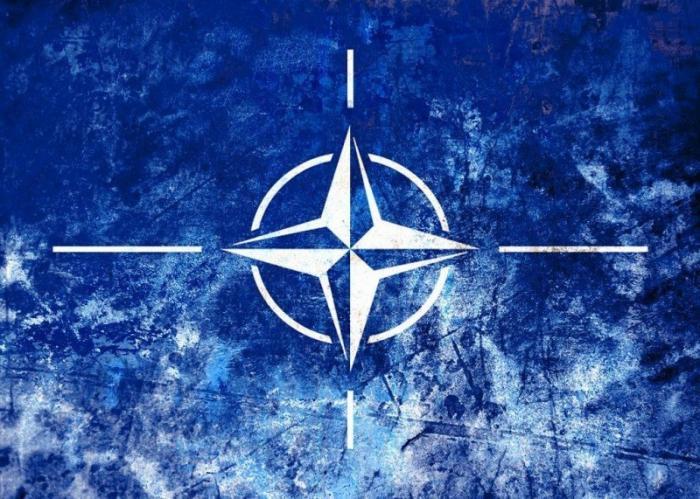 Вместе против НАТО. Организации из десятков стран создали союз для защиты от Дикого Запада