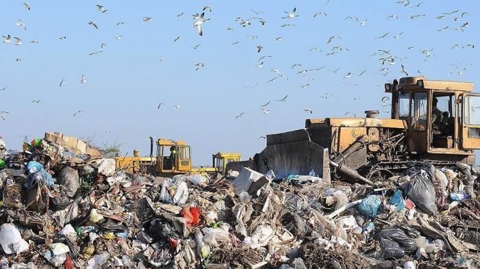 Австрийский опыт по сортированию и сжиганию мусора