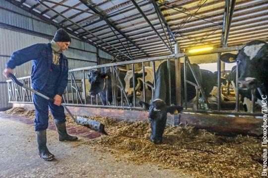 В России резко улучшился доступ фермеров к дешёвым деньгам