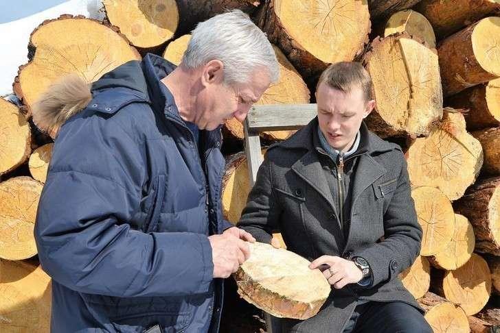 Андрей Николаев (справа) и Ислям Зайнуллов исследуют вещественные улики - арестованную древесину.
