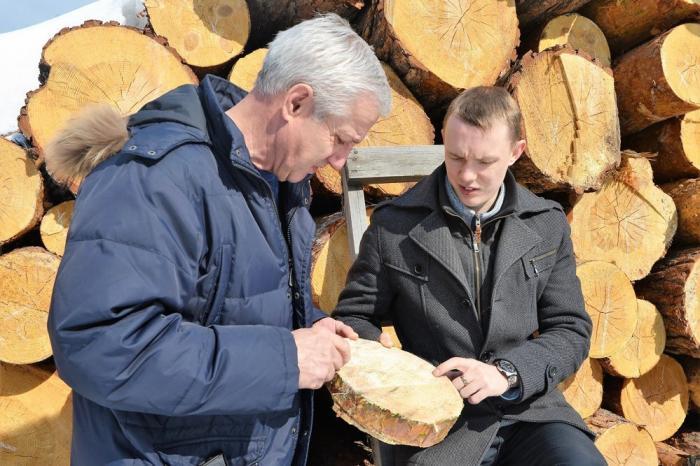 Изобретение сибирского учёного полностью выводит рынок лесозаготовок изтени