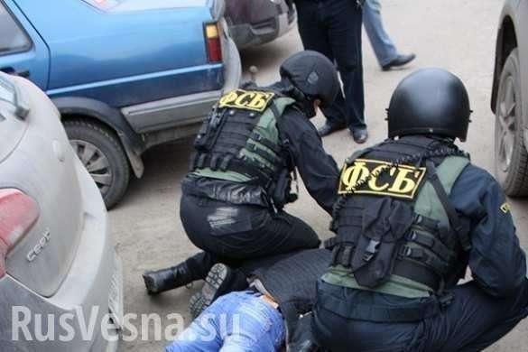 Ростов. Ликвидирована ячейка ИГИЛ, готовившая теракты в России | Русская весна