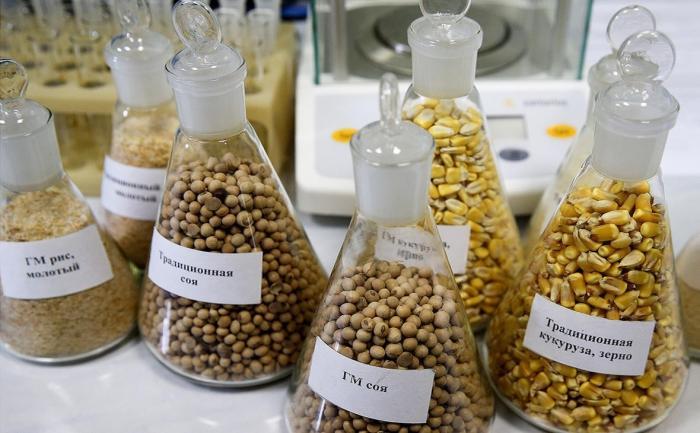 Чиновники из ФАС протолкнули ГМО отраву в Россию под видом передачи технологий