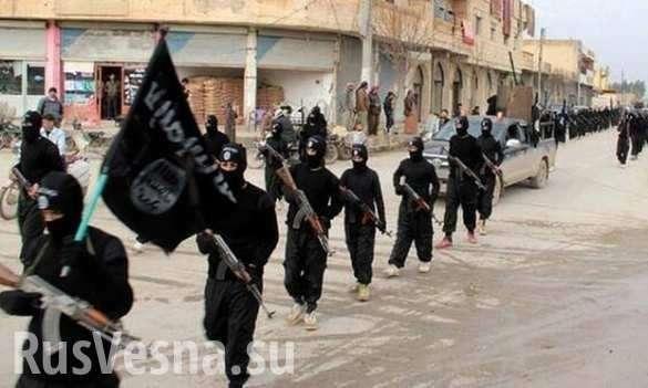 Сергей Шойгу: ИГИЛ переезжает в Азию поближе к России | Русская весна