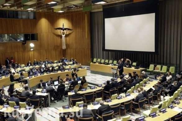 Паразиты из Мирового Правительства придумали, как обойти русское вето в Совбезе ООН | Русская весна