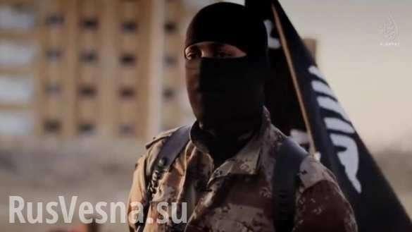 Мусульмане всего мира будут долго лечиться от ментального вируса ИГИЛ  | Русская весна