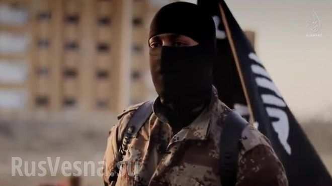 Мусульмане всего мира будут долго лечиться от ментального вируса ИГИЛ