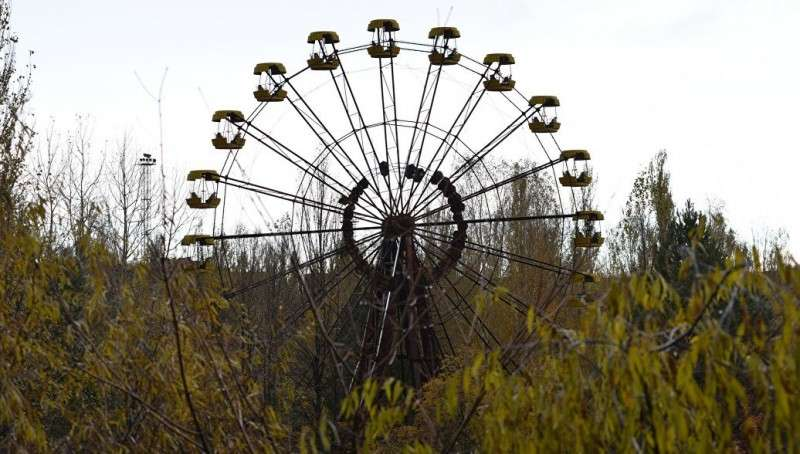 В Чернобыле теперь «рай на земле» и буйство природы