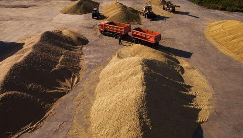 Как Россия стала аграрной сверхдержавой? Цифры, факты и перспективы
