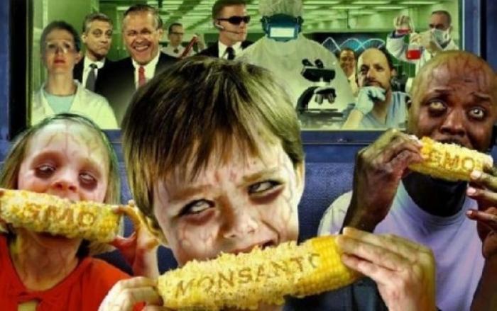 Что пишут об опасности ГМО продуктов англоязычные СМИ