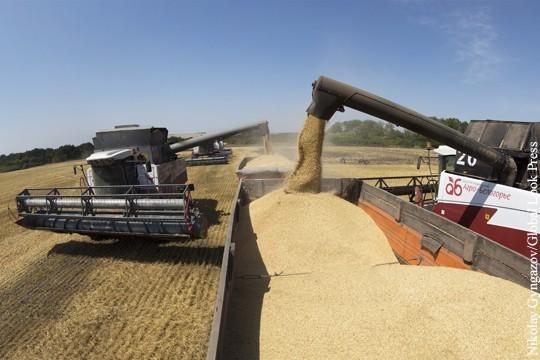 Россия бьет и Европу, и США на мировом рынке зерна