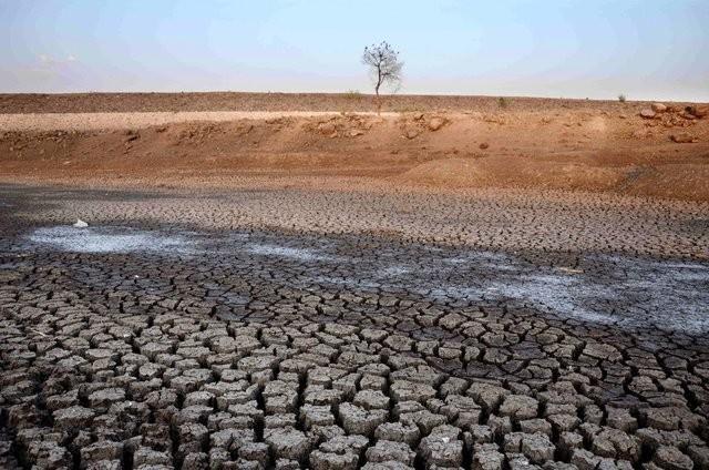 Люди уже уничтожили почти 33% почвы нашей планеты
