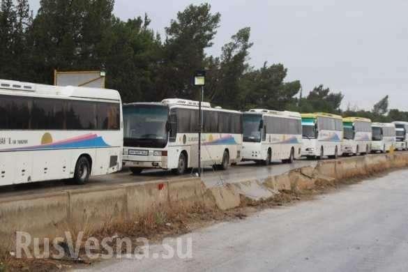 Сирия: наёмники США сдают оружие военным России и уезжают на границу с Турцией | Русская весна