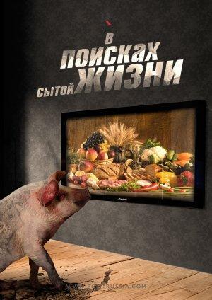 Почему «поравалильщики» не спешат уезжать из России