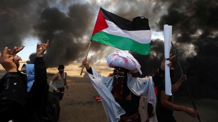 Турция отозвала своих послов из США и Израиля после зверства евреев в секторе Газа