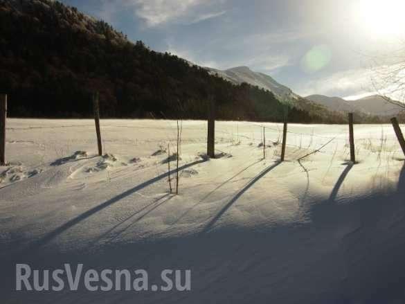 НаФранцию обрушился аномальный снегопад (ФОТО, ВИДЕО) | Русская весна