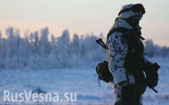 Швеция: почему вторжение в Россию станет кошмаром для любого агрессора? | Русская весна