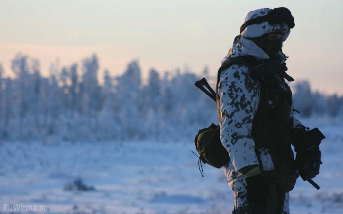Швеция: почему вторжение в Россию станет кошмаром для любого агрессора?