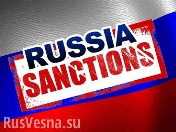 Санкции США против России больно ударили по промышленности Германии  | Русская весна
